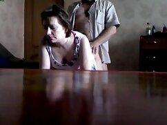 دانش آموزان دباغی که جمع آوری اطلاعات در سکسخواهر وبرادر کشتی